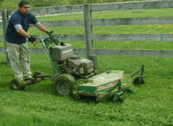 Grass Cutting and its Cost